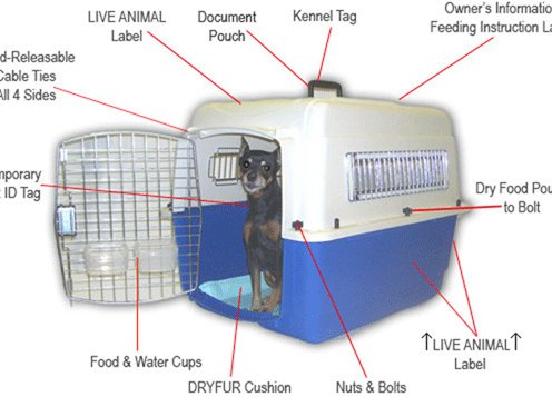Airline Approved Kennel/Pet