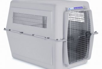 Travel Dog crates and Kennels with a Bicycle
